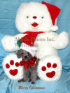 Abby And Christmas Bear - 2003